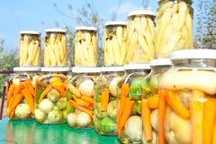Jatr dell'inverno provisions, paprica calda, carota, gr Fotografie Stock Libere da Diritti