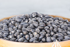 Jatropha curcas seeds Royalty Free Stock Photography