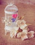 Jaula blanca con fresias y tarjetas del día de San Valentín Fotografía de archivo libre de regalías