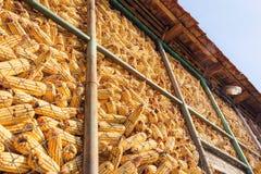 Jaula del almacenamiento del maíz - horizontal Imagen de archivo