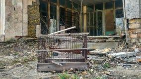 Jaula del loro de Pripyat Imagen de archivo