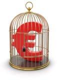 Jaula del oro con el euro (trayectoria de recortes incluida) Imagen de archivo libre de regalías