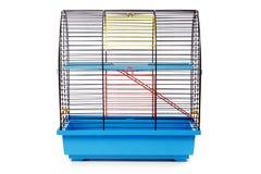 Jaula del roedor del animal doméstico Imagen de archivo libre de regalías