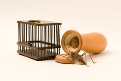 Jaula del saltamontes y de la calabaza y del saltamontes Fotografía de archivo libre de regalías