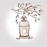 Jaula dibujada mano del vintage del vector birdcage del bosquejo Foto de archivo libre de regalías
