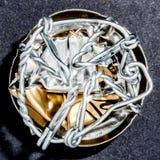Jaula machacada del alambre de una botella de Champán imagen de archivo libre de regalías