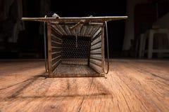 Jaula oxidada de la rata Imagen de archivo libre de regalías