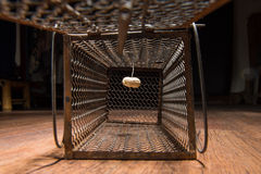 Jaula oxidada de la rata Foto de archivo libre de regalías