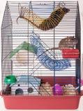 Jaula para las ratas nacionales imagen de archivo libre de regalías