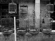 jaulas Foto de archivo