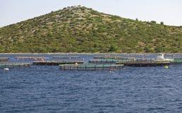 Piscicultura stock photos download 487 images for Jaulas flotantes para piscicultura