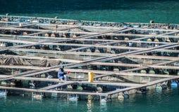 Piscicultura stock photos download 577 images for Jaulas flotantes para piscicultura