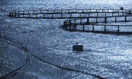 Jaulas redondas de la granja de pescados Imagen de archivo