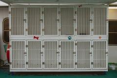 Jaulas vacías para transportar perros en un barco imagenes de archivo
