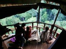 29 jaunary 2017 huay xay Laos, Gibbon erfarenhet - unga Europa Arkivbilder