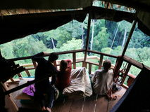 29 jaunary 2017, huay xay Laos, Gibbon-ervaring - jong Europa Stock Afbeeldingen
