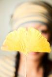 Jaune Photographie stock libre de droits