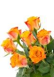 Jaune avec les roses rouges d'isolement Image libre de droits