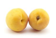 Jaune d'abricot Photographie stock libre de droits