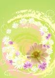 Jaune de fleur Photos libres de droits