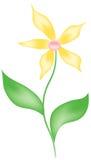 jaune de fleur Photographie stock
