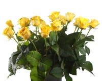 jaune de roses Photographie stock libre de droits
