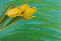 jaune de tulipes Photographie stock libre de droits