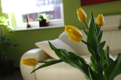 jaune de tulipes de table Image stock