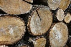 Jaune, gris, brun Texture originale de pile coupée et empilée de bois de chêne naturel photo stock