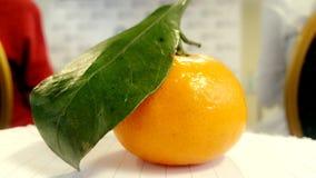 Jaune-orange Photos libres de droits
