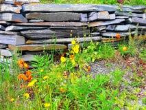 Jaune, orange et vert est le petit morceau tellement beau par vieux mur en pierre photo stock
