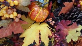 Jaune, orange, feuilles d'automne Photos stock