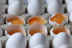 Jaune parmi beaucoup d'oeufs blancs Photographie stock
