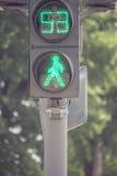 jaune rouge de circulation de feux verts Photographie stock