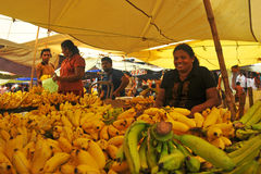 Jaunissez le système de banane - marché de Tangalla (Sri Lanka) Photo libre de droits