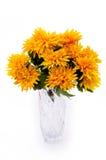 Jaunissez les fleurs dans le vase Photos stock
