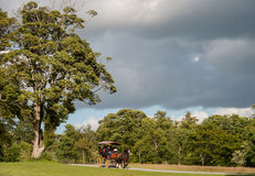 Jaunting car in Killarney national park Stock Images