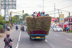 JAVA,印度尼西亚- 2017年12月19日:在干草顶部的本地工人在一辆卡车在印度尼西亚 免版税库存图片