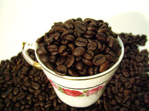 Java anyone?. Coffee beans in a cup Royalty Free Stock Photo