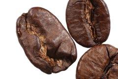 Java Beans d'isolement Image libre de droits