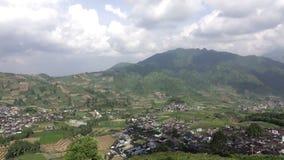 Java, Indonésie collines avec des complots des gisements de riz de degré différent d'une maturité banque de vidéos