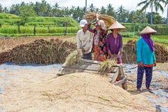 JAVA, INDONESIË - 29 december 2017: Lokale arbeiders die in t werken Royalty-vrije Stock Foto