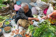 JAVA, INDONESIA - DECEMBER 18, 2016: Sales woman selling vegetab. Les on the market on Java Indonesia 18th december 2016 Stock Photography