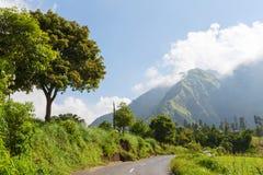Java landskap royaltyfri foto
