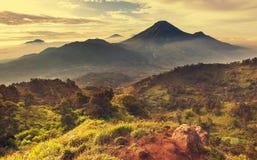 Java landskap arkivbilder