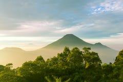 Java landskap Fotografering för Bildbyråer