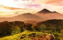 Java landskap Royaltyfri Bild