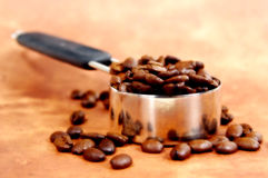 Free Java Serving 2 Stock Images - 53294