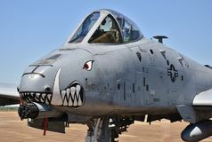 Javali africano da força aérea A-10/raio II Imagem de Stock