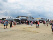 Javalis africanos A10 no Airshow Imagem de Stock